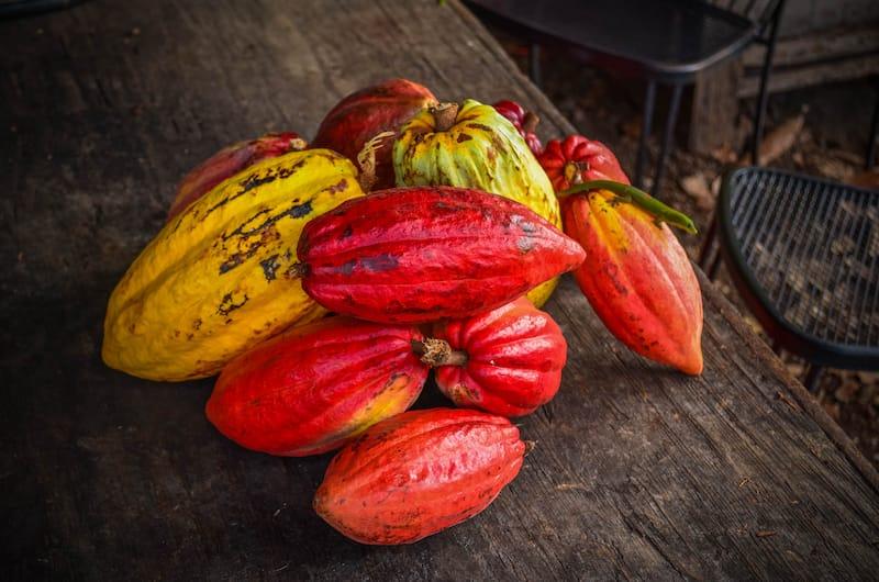 Chocolate factory in Hawaii