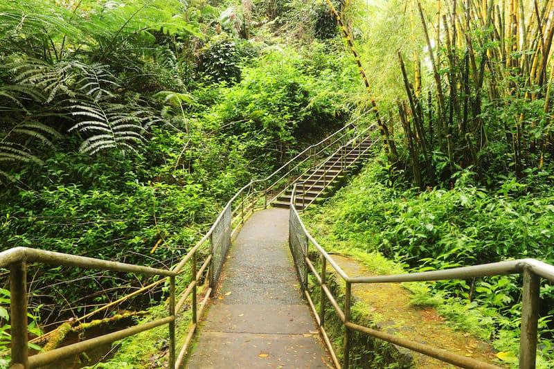 Getting Around Akaka Falls