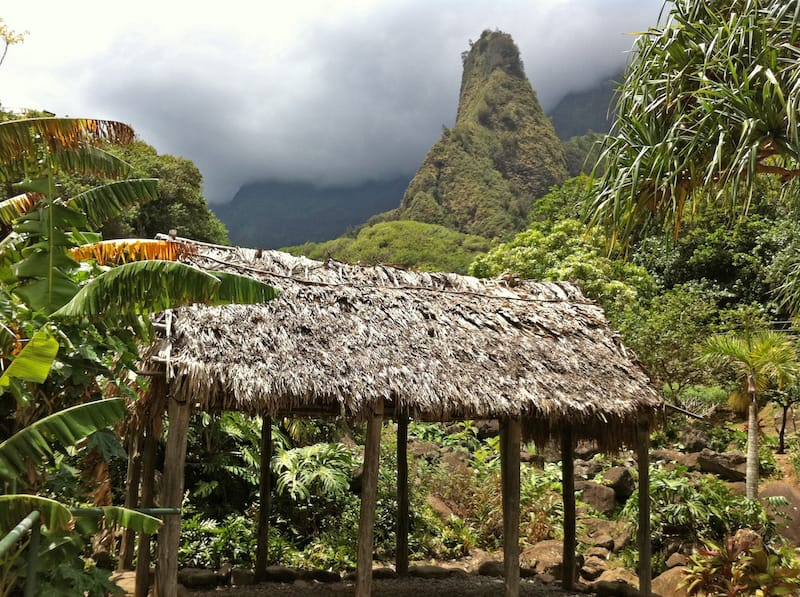 Grass hut in Iao Valley