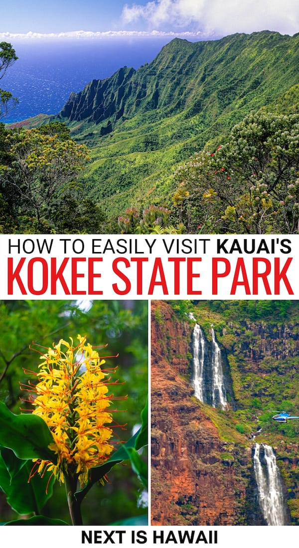 Are you planning on visiting Kokee State Park on Kauai? This travel guide tells you the best things to do in Kokee State Park, how to visit, and more!
