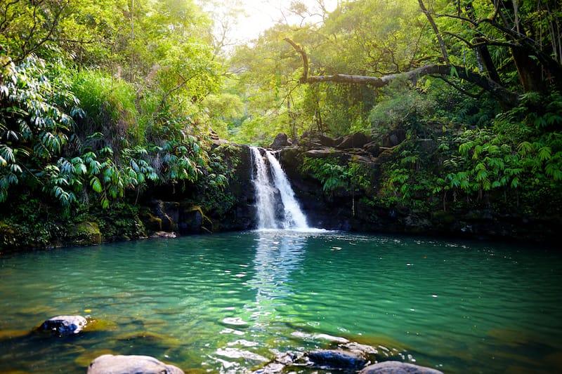 Lower Waikani Falls