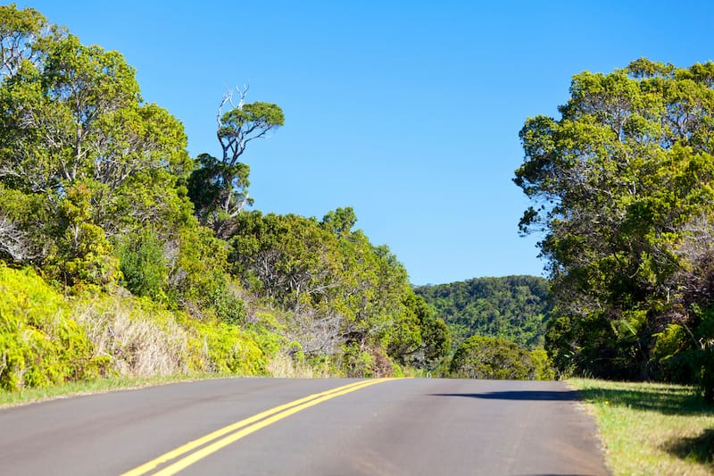 Road through Kokee State Park