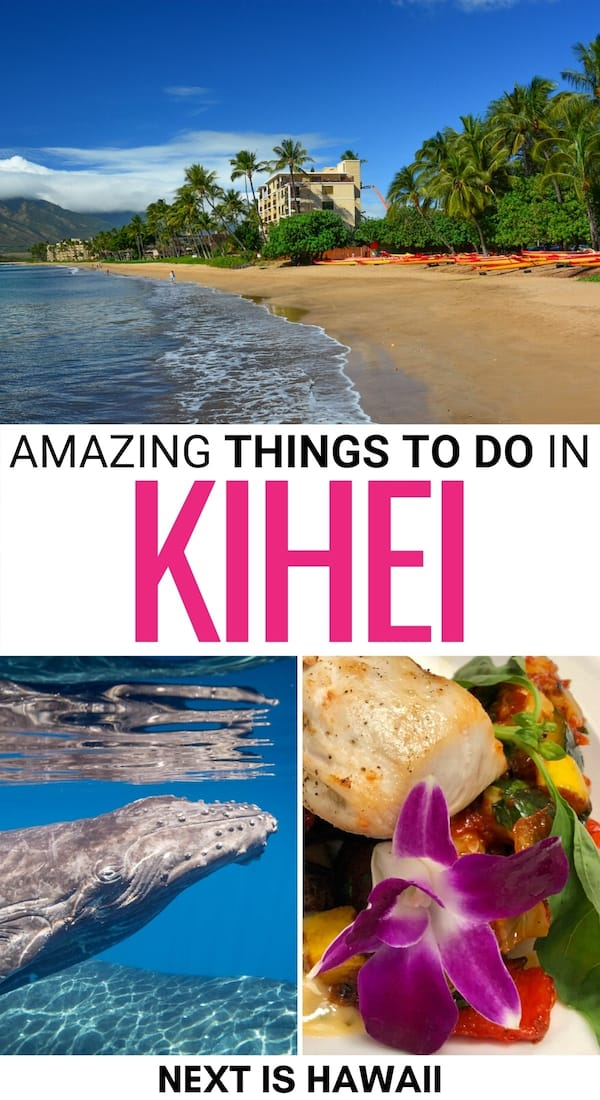 Are you on the lookout for the best things to do in Kihei on Maui? This is a guide to the best attractions in Kihei, including beaches, food, and more!   Kihei Things to do   What to do in Kihei   Kihei attractions   Places to visit in Maui   Maui day trips   Maui destinations   Places to visit in Kihei   Things to do in Maui   Kihei beaches   Kihei landmarks   Kihei restaurants   Kihei beer   Kihei travel guide   Kihei itinerary