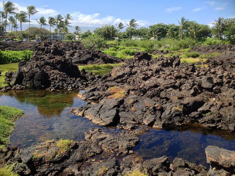 Waikoloa Anchialine Pond Preservation Area