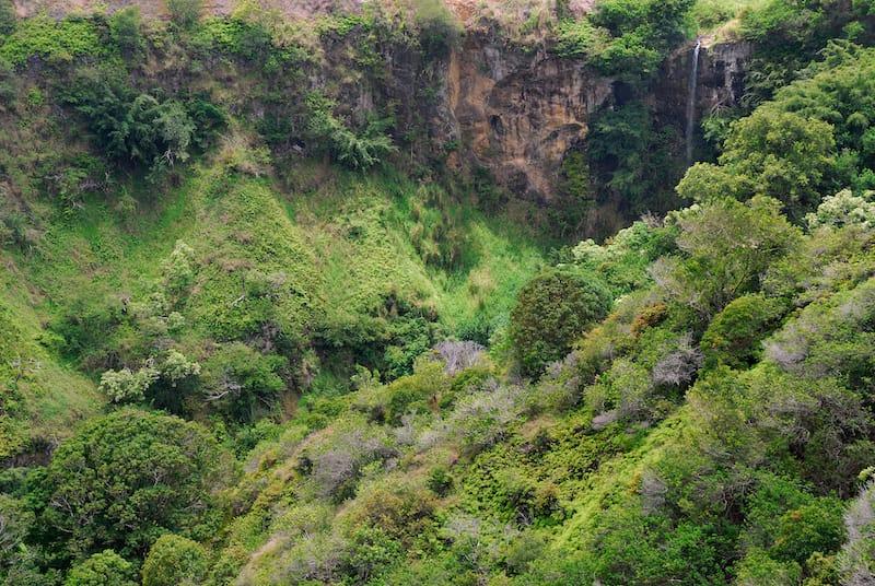 Waterfalls in Maui - Makamakaole Falls