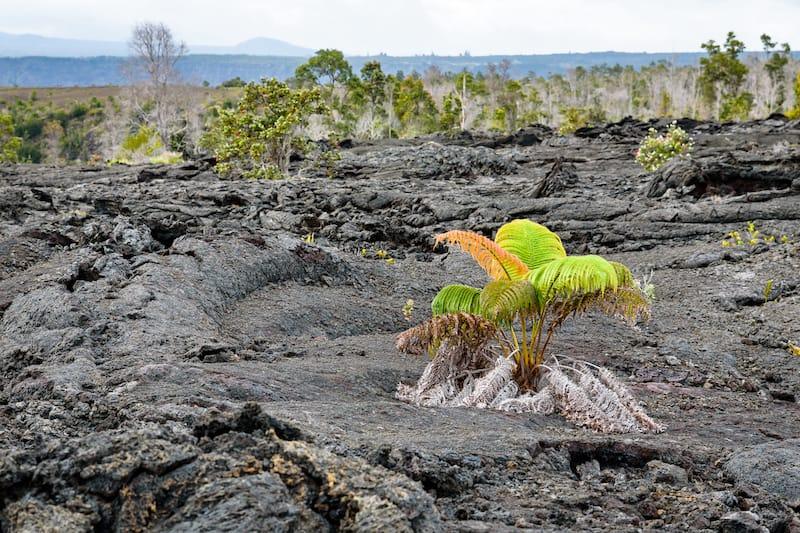 Keanakakoi Crater