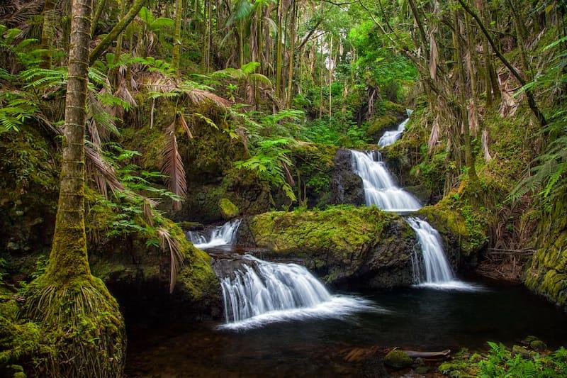 Onomea Falls in Hawaii Tropical Botanical Gardens