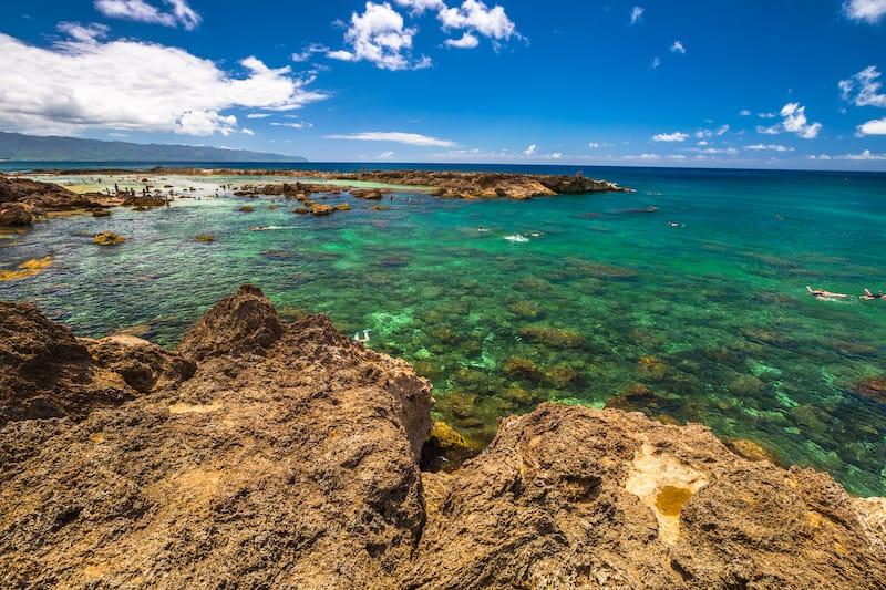Shark's Cove Oahu