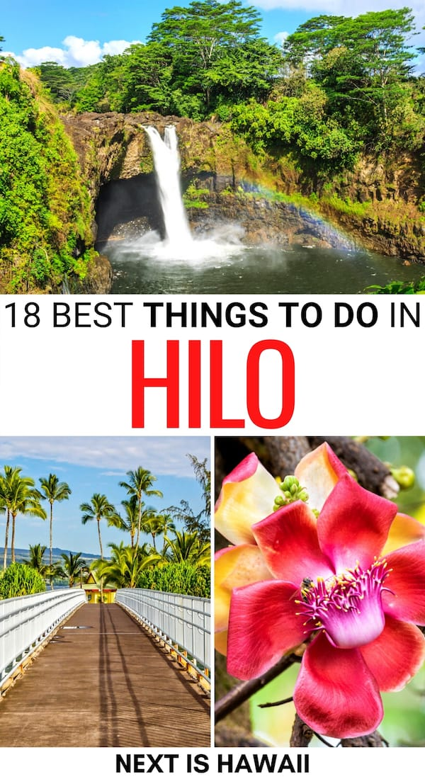 Visiting the Big Island for the first time? These are the best things to do in Hilo, the gateway to Volcanoes National Park! It includes Hilo day trips and more. | Hilo things to do | Hilo landmarks | Hilo attractions | What to do in Hilo | Day trips from Hilo | Hilo tours | Hilo hiking | Hilo waterfalls | Hilo trails | Places to visit in Hilo HI | Places to see in Hilo | Hilo itinerary | Big Island places to visit | Visit Hilo | Travel to Hilo | Hilo museums
