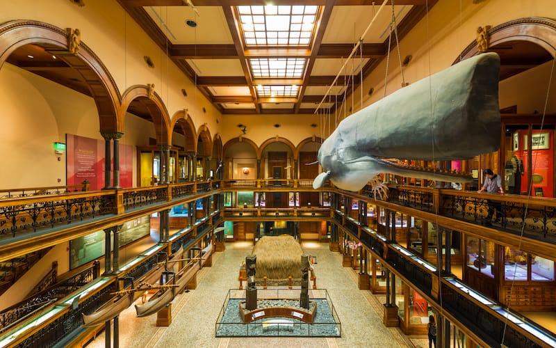 The Bernice Pauahi Bishop Museum - Phillip B. Espinasse - Shutterstock.com